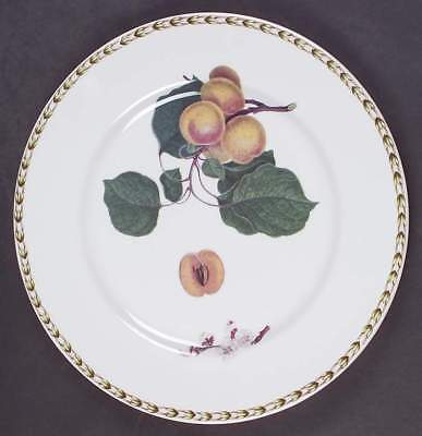 Rosina Queens HOOKER'S FRUIT (INDIA) Apricot Dinner Plate 5963232