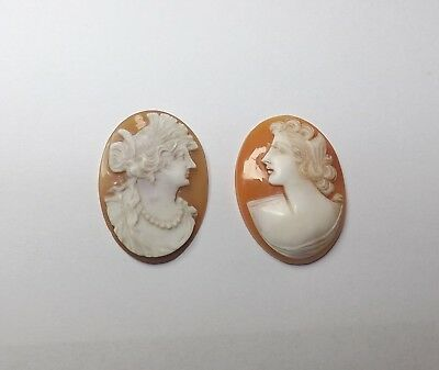Antique Lot Of 2 Carved Shell Unmounted Loose Cameos