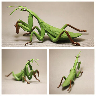 Plastic Mantodea Animal Insects Figure Model Kids Educational Toy Gift New