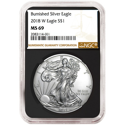 2018-W Burnished $1 American Silver Eagle NGC MS69 Brown Label Retro Core