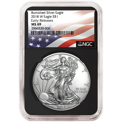 2018-W Burnished $1 American Silver Eagle NGC MS69 Flag ER Label Retro Core