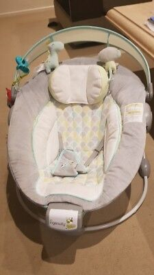 Ingenuity Morrison Bouncer Great Condition RRP $99.95
