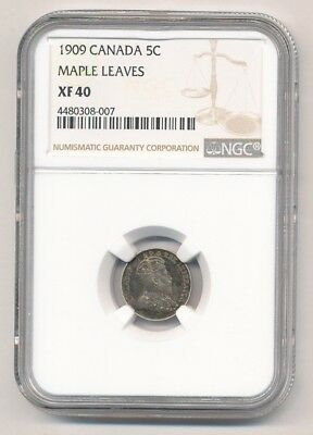 1909 Canada .925 Silver 5 Cent Edward Vii Maple Leaves Ngc Xf 40 - Ml