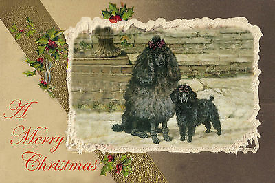 Black Poodle Dog w Puppy byF T Daws 1942 New Blank Christmas Note Cards