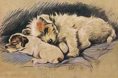 Jack Russell Terrier Dog & Puppy 1937 Dog L. Dawson  LARGE New Blank Note Cards