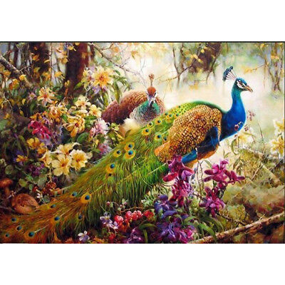 DIY Oil Painting Pain By Numbers Kit on Canvas 40*50 Art Pictures- peacock