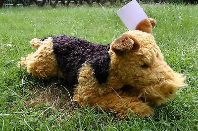 Welsh Terrier, liegend 45 cm, Hund