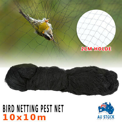 Nylon Forest Garden Protective Anti Bird Netting Poultry Fish Net 10M*10M Black