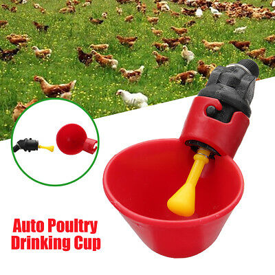 1/5/10Pcs Poultry Water Drinking Cup Feeder Chicken Hen Bird Automatic Drinker