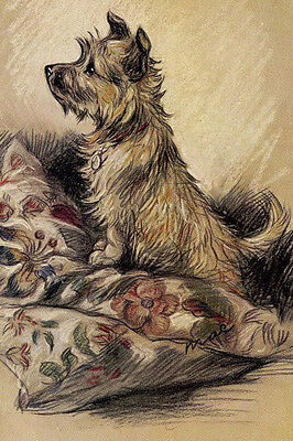 Cairn Terrier Dog ON PILLOW 1930's  by Lucy Dawson  LARGE New Blank Note Cards