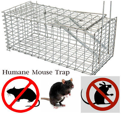 2x X-Large Galvanised Metal Humane Collapsible Rat Mouse Trap Cage Easy Bait
