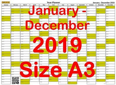 a3 olive year planner 1st january 2019 31st december 2019 wall calendar chart