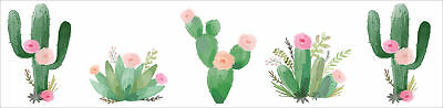 Pink Green Boho Watercolor Wallpaper Wall Border for Cactus Floral Collection