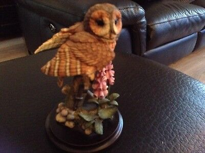 Collectable Country Artists, Broadway Birds Tawny Owl with Foxglove