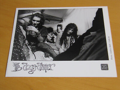The Dogs D'amour - Original Uk Promo Press Photo (A)