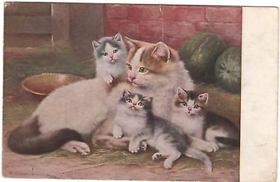 Vintage Postcard Art Signed W Schwar Kittens Cat Animals Melons