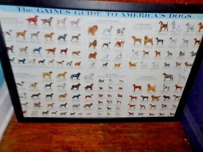"""Large Vintage Poster """"The Gaines Guide to America's Dogs"""" 1973, Unframed"""