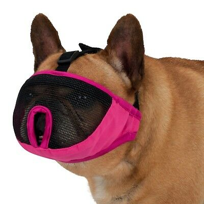 Muzzle For Short Nosed Breed Dogs IE Frenchy Bull Dog Boxer Boston Terrier