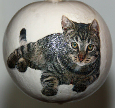 gourd garden or Christmas ornament with  tabby cat