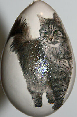 gourd garden or Christmas ornament with maine coon cat