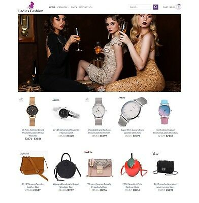 Established Ladies Fashion STORE Profitable Website Business - Dropshiping