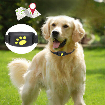 Waterproof Mini Pet GPS Tracker Collar For Dog Cat Security Fence Alarming Sim