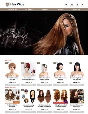 Established Hair Wigs Profitable Website Business For Sale - Dropshiping