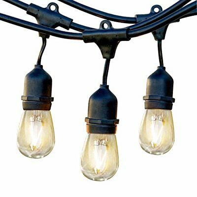 Pro LED Commercial Outdoor Light Strand Hanging Sockets  2 Watt Bulbs 48 Ft Blk
