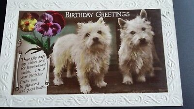 Terrier Dogs Postcard Birthday Greetings Vintage Card 1929 Little Common Sussex