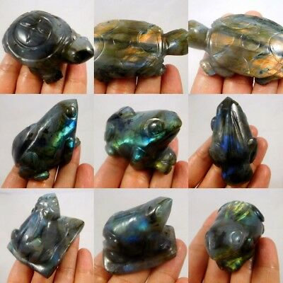 100% Natural Turtle & Frog Labradorite Animal Carving Figurine NNA89-116