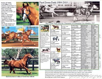 FIRST DOWN DASH Famous Champion  Racing Quarter horse picture pedigree
