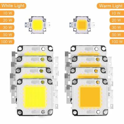 High Power LED 12V 10W 20W 30W 50W 100W DIY Flood Light COB LED Diode Chip Lamp