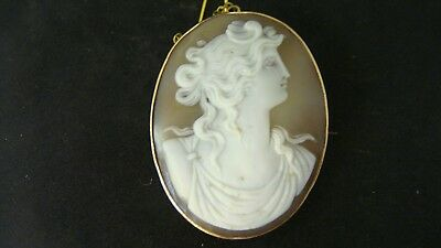 Antique Large Victorian Carved Shell & Solid Rose Gold Cameo Brooch Pin