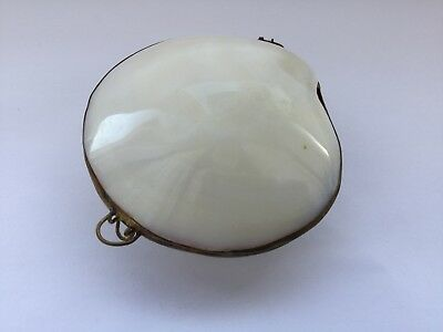 Vintage Sea Shell Mussel Oyster Clam Brass Case