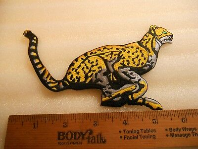 "6"" Leopard Big Cat Iron on Patch"