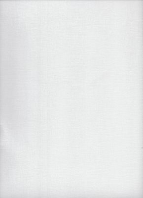 24 count Zweigart Congress Cloth  White - size 49x62cms