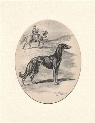 Saulki Dog by Edwin Megargee 1953 Beautiful Large Oval Print 11X14
