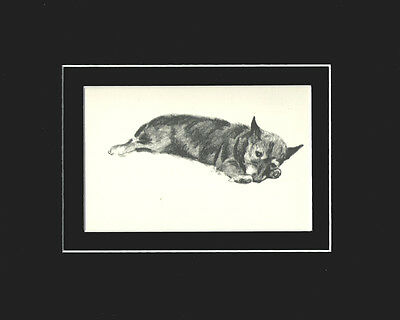 "Cairn Terrier Dog Print 1939 by Cecil Aldin 8X10"" Matted Cute Puppy Sketch"