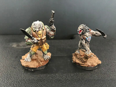 Infinity the Game, Ariadna, DEVIL DOGS TEAMS / pro paint