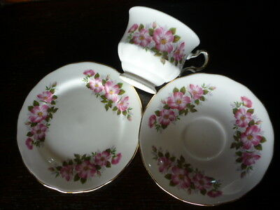 High tea 1940's Queen Anne bone china cup saucer plate excell.cond.SALE $19.90