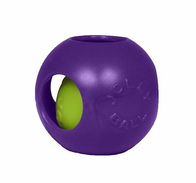Jolly Pets Teaser Ball Erratic Floats Interactive Tough Dog Toy Purple 4.5 inch