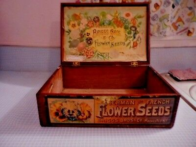 Antique Briggs Bros & Co. Flower Seeds Dovetail Display Box Rochester NY