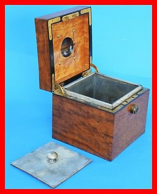 Antique ENGLISH  TEA CADDY Exotic Wood - Silver  Box - RARE