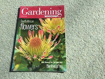 Gardening Which? Magazine. December, 2000. South African flowers The love of ivy
