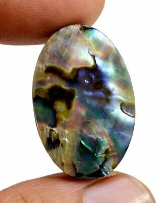 22ct Rare Natural Doublet Abalone Shell Oval Cabochon Loose Gemstone On Ebay