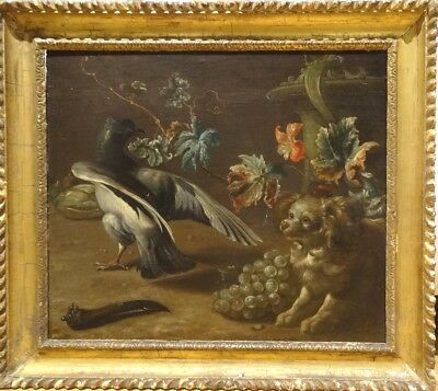 Fine Large 18th Century French Still Life Spaniel Magpie & Grapes Oil Painting