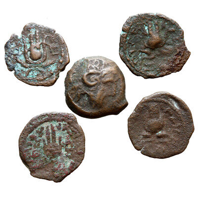 Lot Of 5 Uncertain Greek Bronze Coins Kyrene Kyrenaika