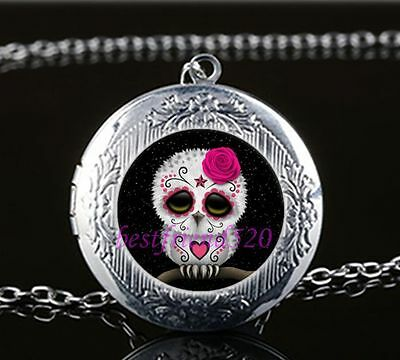 OWL silver LOCKET OPENS GOTH SUGARSKULL FLOWERS DEATH glass necklace pendant NEW