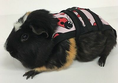 Piggy Pants Guinea Pig Diapers-Pink Lady Bugs  ***FREE SHIPPING***