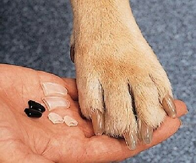 Vet approved soft vinyl nail caps clear - dogs weighing 70lbs + stop nail damage